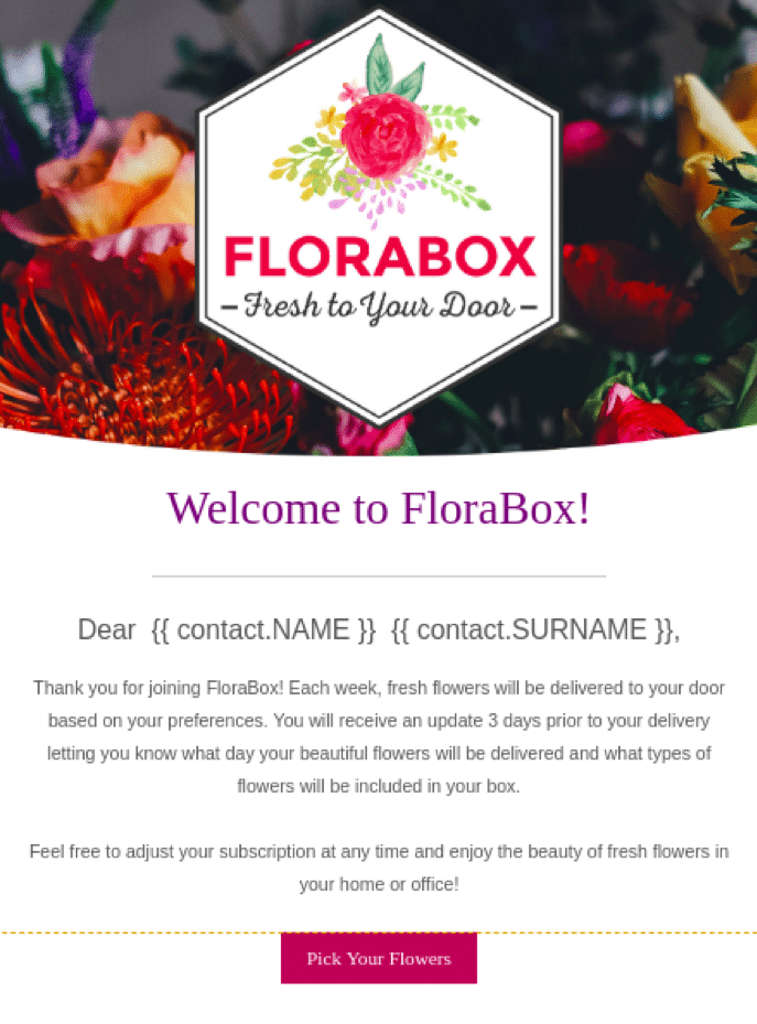 email marketing sendinblue